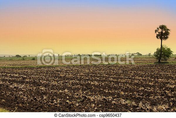 Barren fields in India - csp9650437