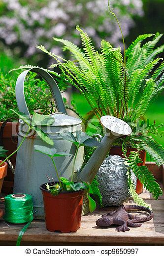 Gardening still life - csp9650997
