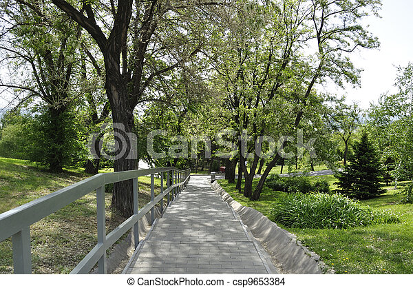 Beautiful landscape with alley in blossom - csp9653384