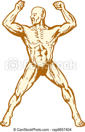 male human anatomy body builder flexing muscle - csp9657404
