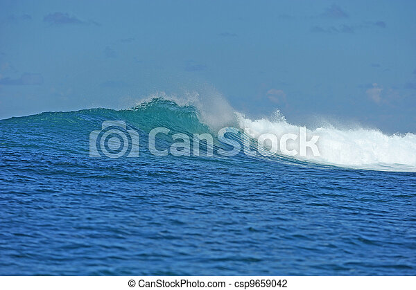 Swell in tropical setting - csp9659042