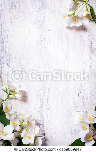 art jasmine spring flowers frame on old wood background - csp9659947