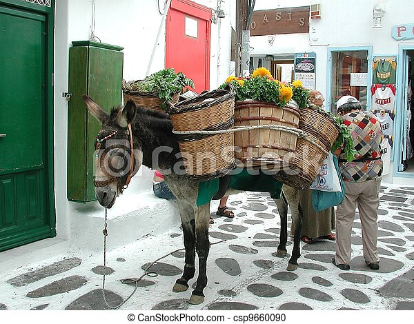 Donkey carrying goods for sale. - csp9660090
