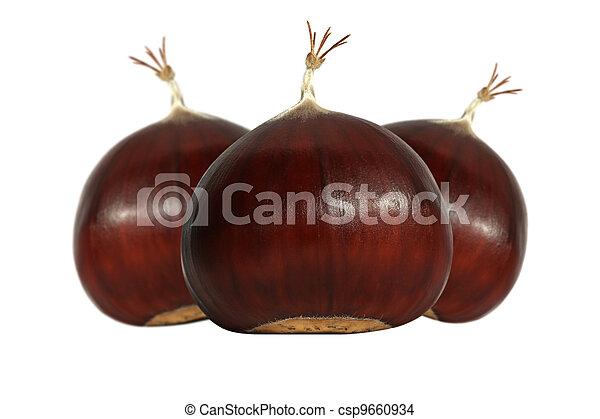 Edible chestnuts - csp9660934