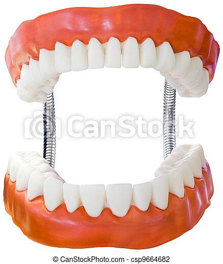 Denture Model Cutout - csp9664682