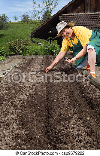 Retired woman planting seeds - csp9679222