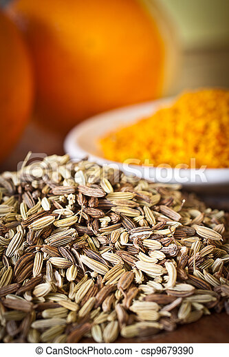 Fennel seeds and dry orange rind. - csp9679390