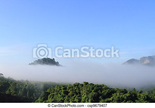Atmosphere morning on mountain , Thailand   - csp9679407