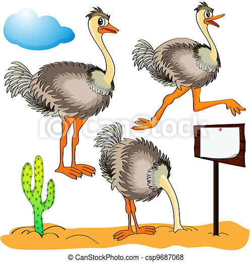 Illustration ostrich runs, covers head sand and cost(stand)s on background cloud and cactus - csp9687068