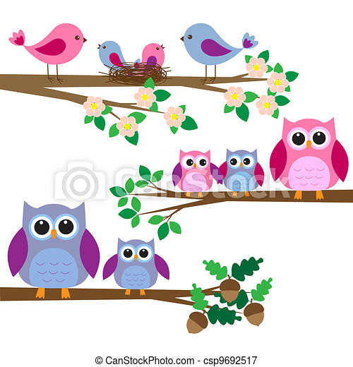 Owls and birds - csp9692517