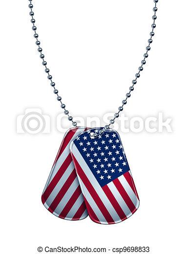 American Dog Tag - csp9698833