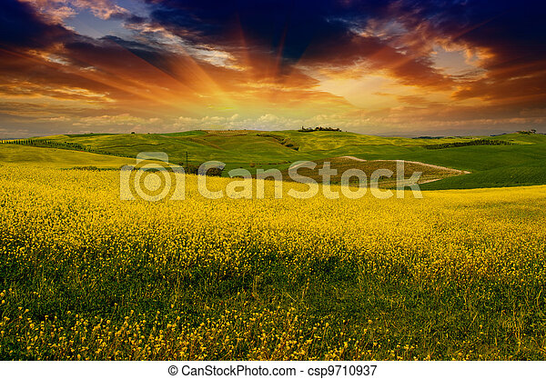 Landscape and Meadows of Tuscany, Spring Season - csp9710937