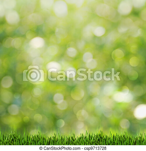 Green grass over abstract summer backgrounds with beauty bokeh - csp9713728