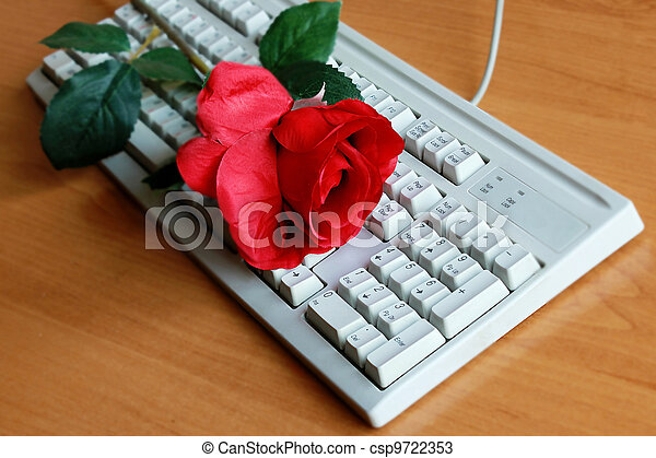 Rose and the computer