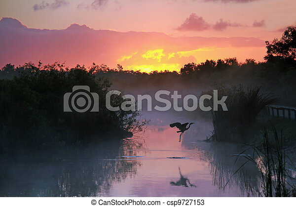 Sunrise in the Everglades - csp9727153