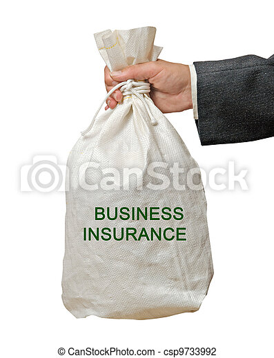 Bag with business insurance - csp9733992