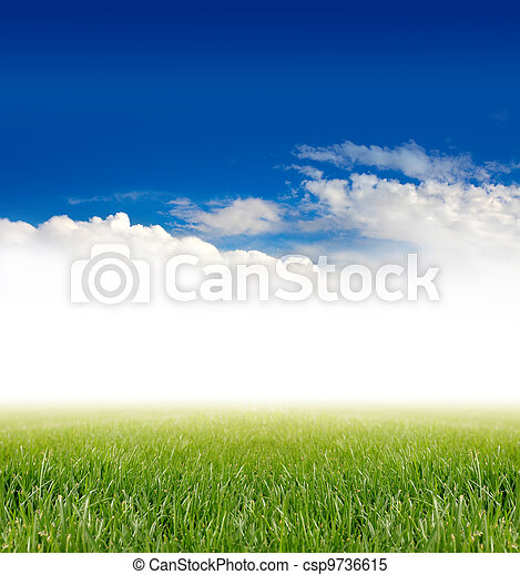 green grass under blue sky - csp9736615