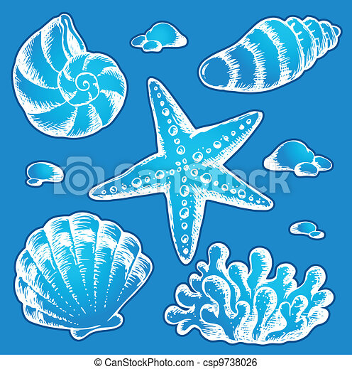 Sea shells drawings 2 - csp9738026