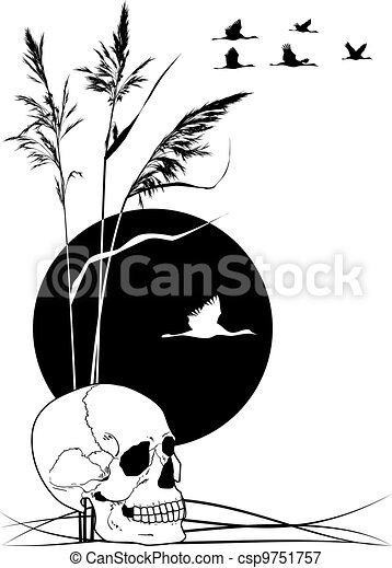 skull, cranes and reed - csp9751757