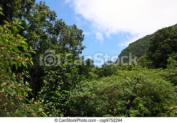 Botanical Gardens  - csp9752294