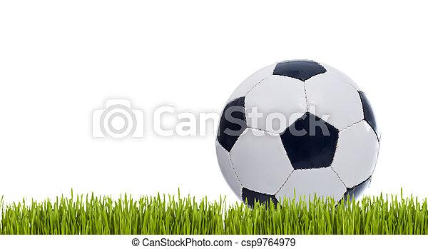 Classic soccer ball on grass - csp9764979