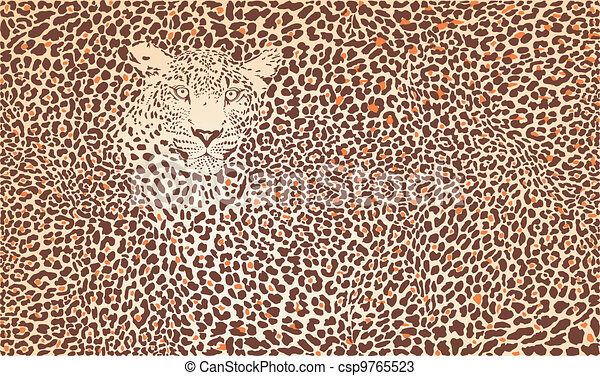Pattern background leopard - csp9765523