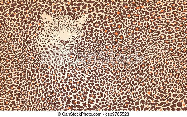 Pattern background leopard  - csp9765523