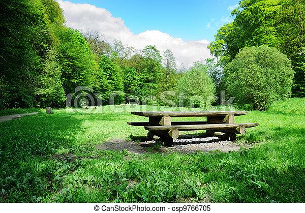 野餐, 地方, 森林, 打開 - csp9766705
