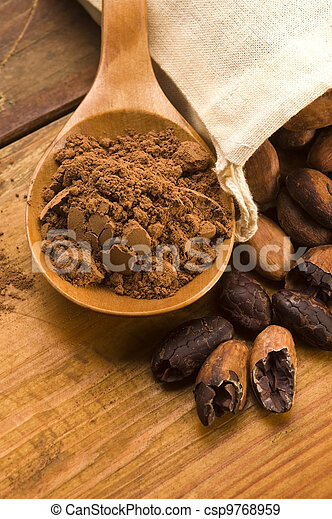Cocoa (cacao) beans on natural wooden table - csp9768959