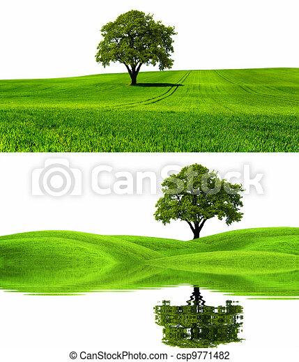 Stock Illustration - Green nature environment *