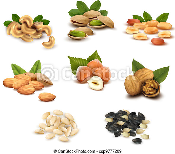 Collection of ripe nuts and seeds - csp9777209