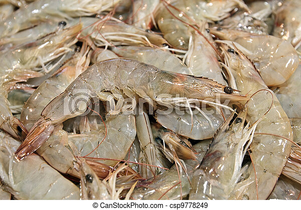 Fresh shrimps at fish market in Seoul  - csp9778249