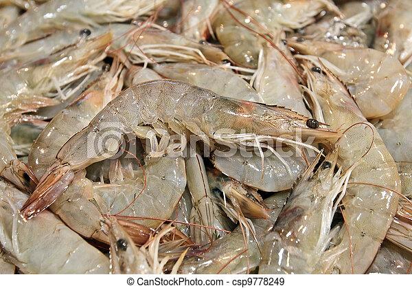 Fresh shrimps at fish market in Seoul  - csp9778249
