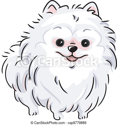 eps vectors of white pomeranian   illustration featuring a