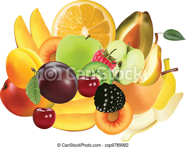 Variety of Exotic fruits - csp9789982