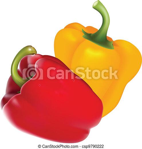 Paprika - csp9790222