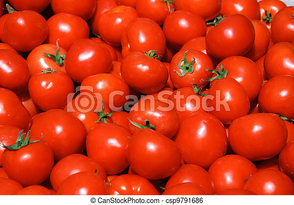 Group of tomatoes - csp9791686