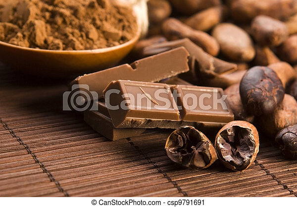 Cocoa (cacao) beans with chocolate - csp9791691