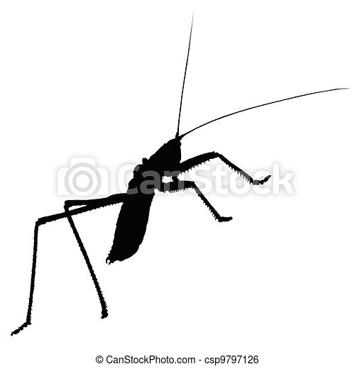 strange insect vector silhouette - csp9797126