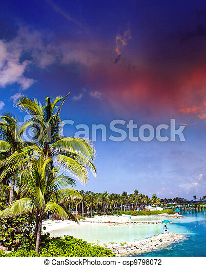 Cloudy Sky above Nassau Vegetation, Bahamas - csp9798072