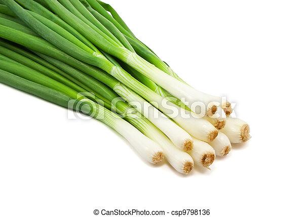 Green Onion  - csp9798136