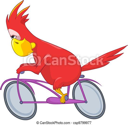 Funny Parrot. Biker. - csp9799977