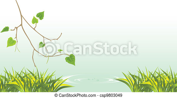 Birch and grass at the river - csp9803049