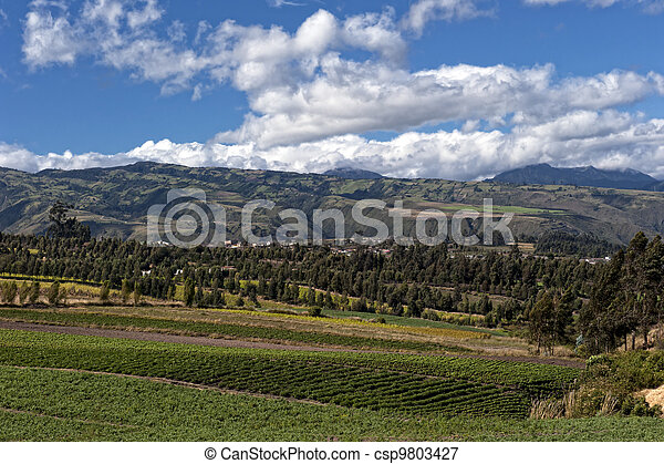 Agriculture in the Andean highlands - csp9803427