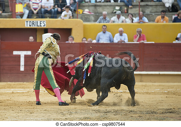 Bullfighter and bull. - csp9807544
