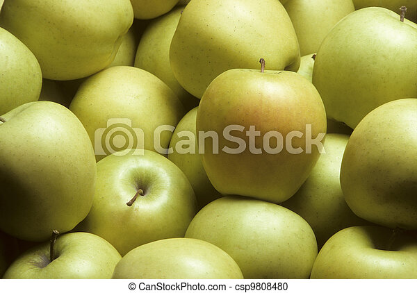 Golden Delicious Apples - csp9808480