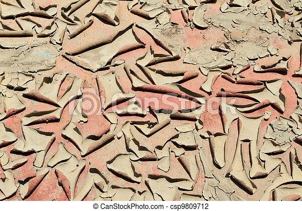 Dry soil in arid areas   - csp9809712