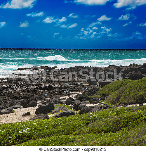 Mauritius.  island Gabriel. - csp9816213