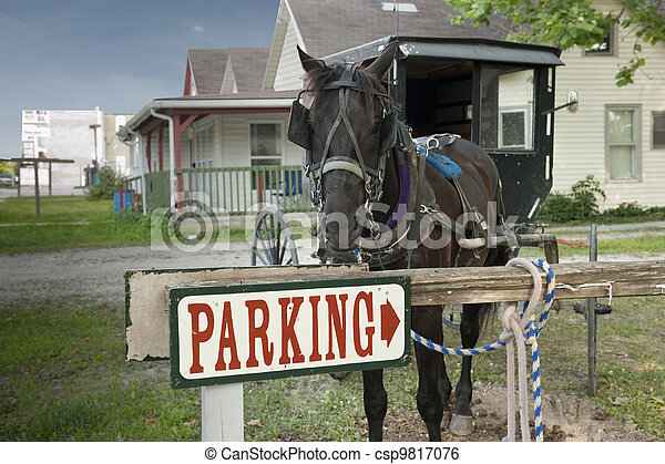 parking horse and buggy - csp9817076