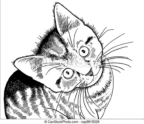R C3 A9aliste Dessin De A Chaton 9818326 likewise Pig Line Drawing together with House Coloring Page Scary Haunted Free Printable Pages Colouring besides Clipart 9608 moreover Tiger Claw Marks Clipart 34036. on cute pig black and white cliparts